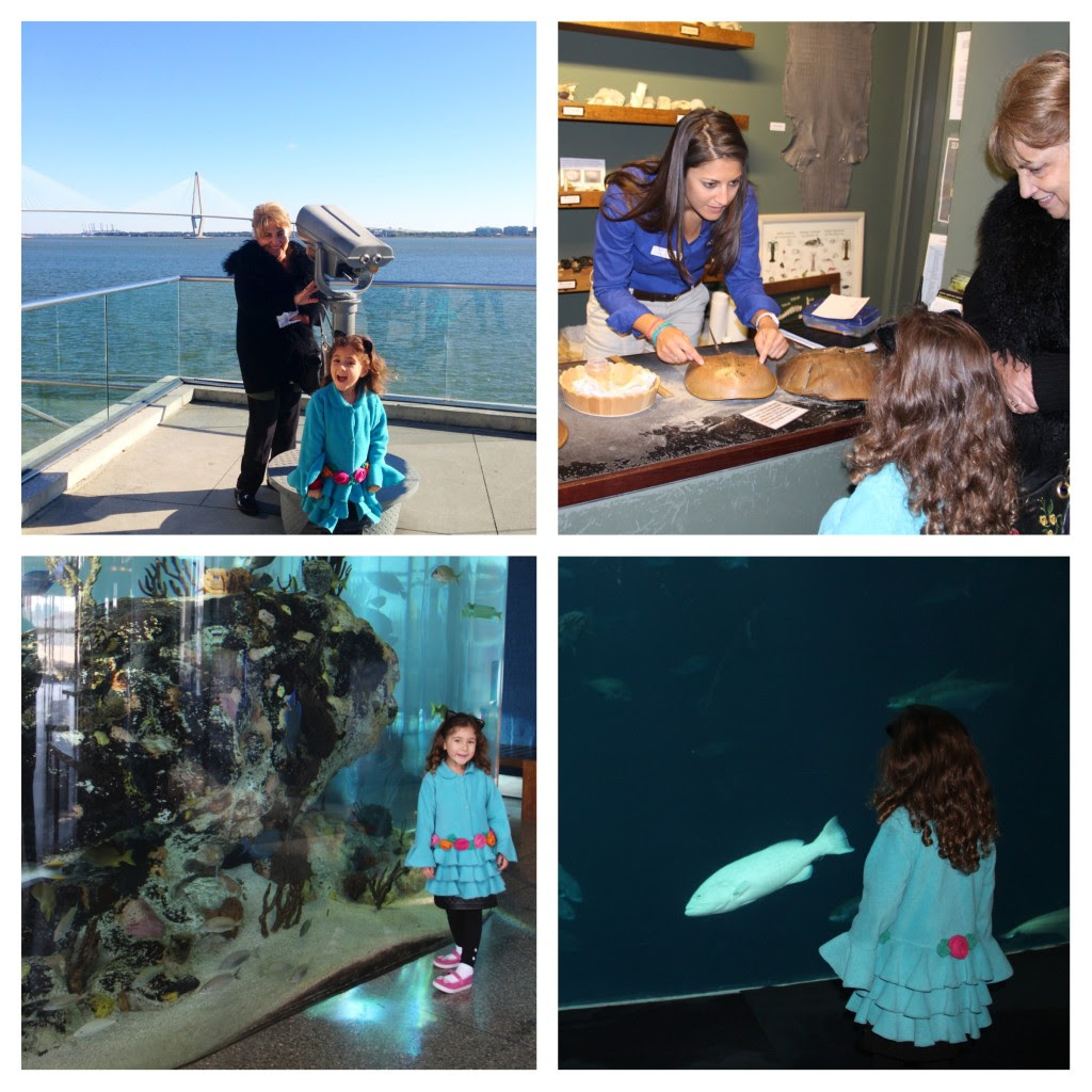Family Friendly Charleston, South Carolina, South Carolina Aquarium, Family Travel, Aquarium, Charleston with Kids,