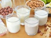 Leite Vegetal: Veja quais são os Benefícios e as Receitas fáceis