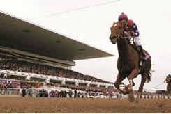 Azeri wins the 2002 Breeders' Cup Distaff at Arlington International Racecourse