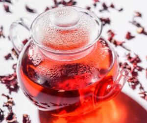 Hibiscus tea pot