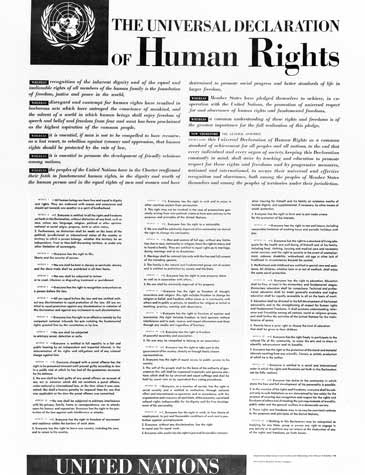 Image result for images of universal declaration of human rights