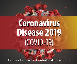 2019 Novel Coronavirus (2019-nCov)