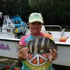 Sheepshead Susie Thompson