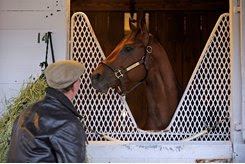 Air France produced multiple graded stakes-winning millionaire Smooth Air (pictured) and grade 2 winner Overdriven