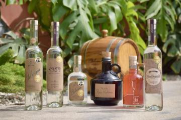 Finca 314 lanzará línea de vinos patrimoniales este año