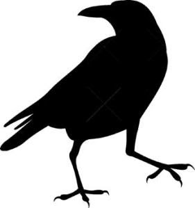 Big Read 2015-16 image Raven shadow (without markings)