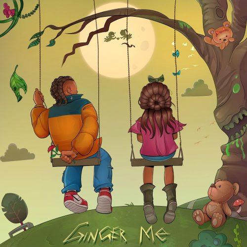 Rema Ginger Me mp3 download