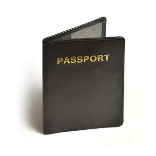 Travel Blue RFID Blocking Leather Passport Cover 621 - Black
