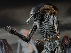 ALIEN: COVENANT FIGURES & COLLECTIBLES