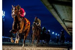 War of Will wins the Risen Star Stakes at Fair Grounds
