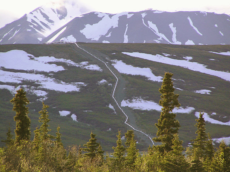 File:OilPipeAlaska.JPG