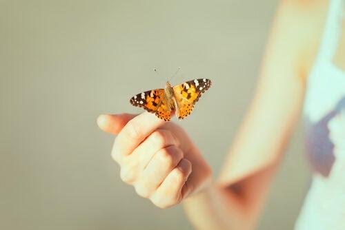 mano con mariposa simbolizando la psicología del perdón