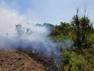 Prescribed fire along grassland at Spread Eagle State Natural Area with smoke in background.