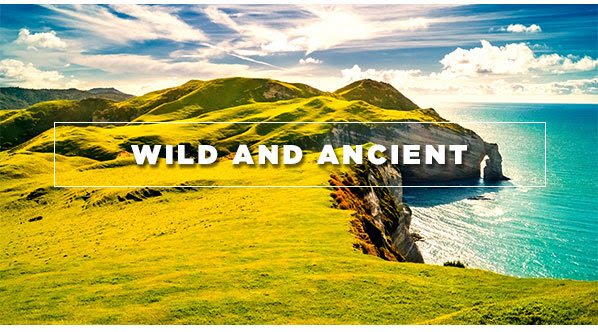 Wild and Ancient