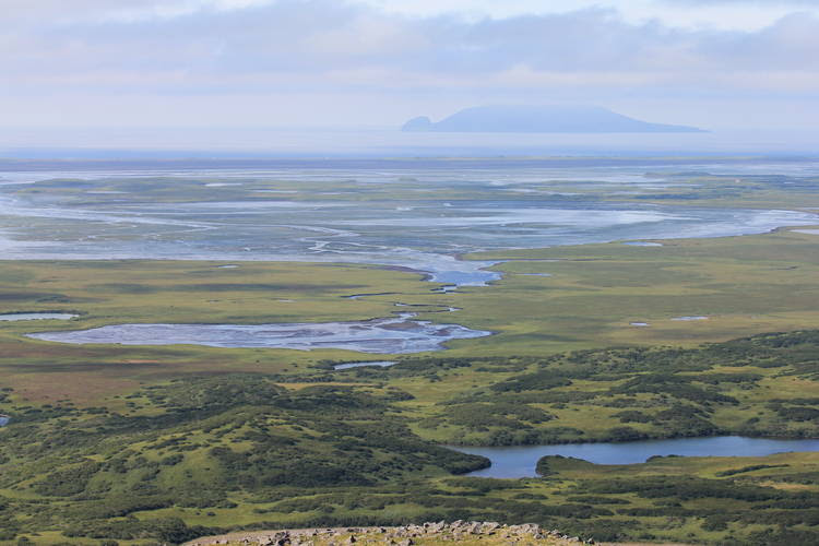 The Izembek Wilderness Wetlands are shown. (Kristine Sowl/U.S. Fish and Wildlife Service)
