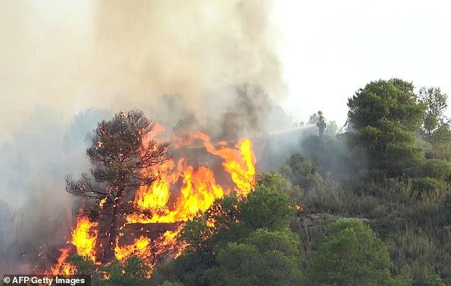 Feuerwehrmänner, die versuchen, ein verheerendes Feuer             in der Nähe von Torre de la Espanyol in Ribera da Ebro am             27. Juni an den Ufern des Flusses Ebre im Nordosten Spaniens             zu löschen