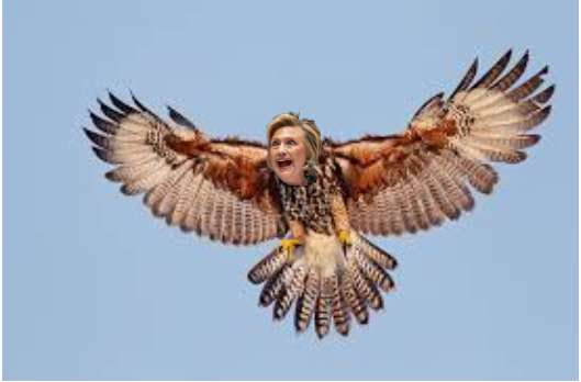 Hillary swooping in