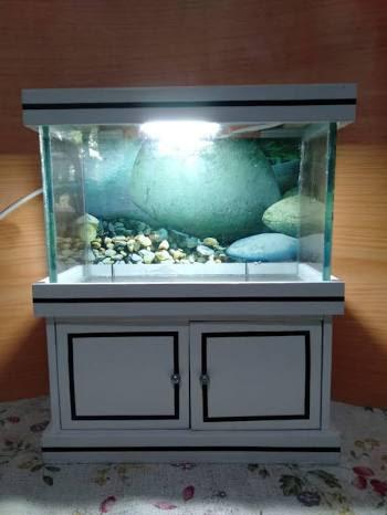 aquarium minimalis fulset + lampu LED