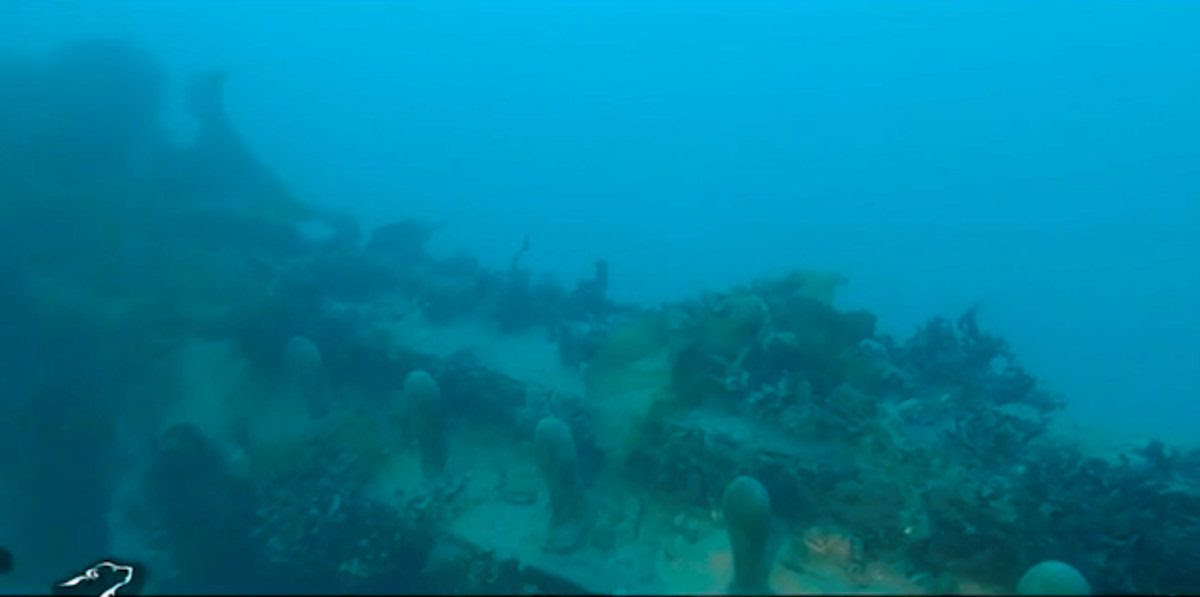 A still image captured from a video footage from the research vessel Martin Bergmann of the Arctic Research Foundation shows what they say is the wreckage of the of HMS Terror in the bottom of Terror Bay in Canada on September 3, 2016.  Courtesy Arctic Research Foundation/Handout via REUTERS    ATTENTION EDITORS - THIS IMAGE WAS PROVIDED BY A THIRD PARTY. EDITORIAL USE ONLY. NO RESALES. NO ARCHIVE