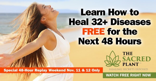 [Replay Weekend] The Sacred Plant docuseries 591794901