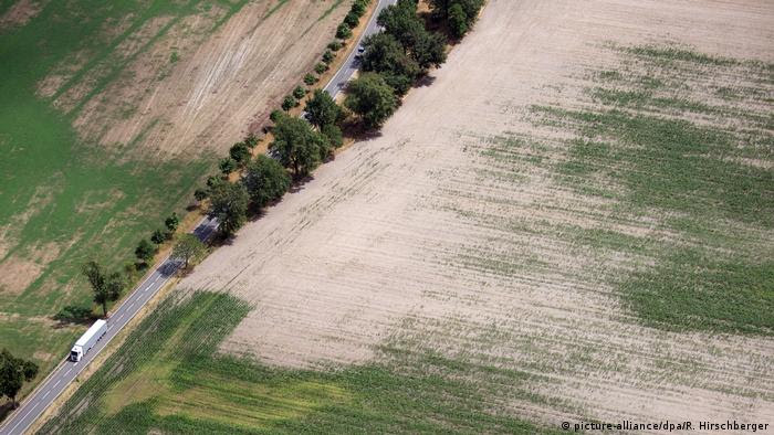 Dry farmland in Germany (picture-alliance/dpa/R. Hirschberger)