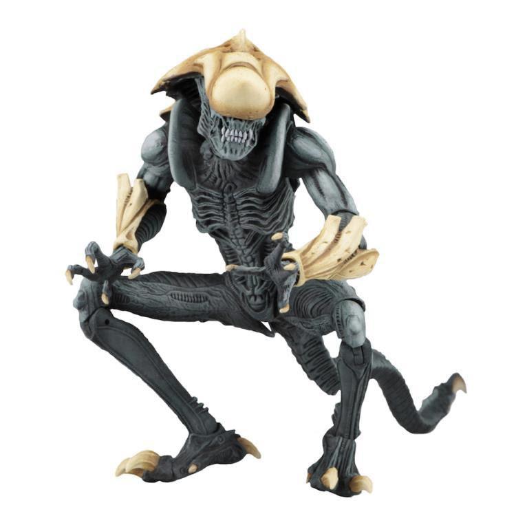 Image of Alien vs. Predator Arcade Appearance Aliens - Chrysalis Alien