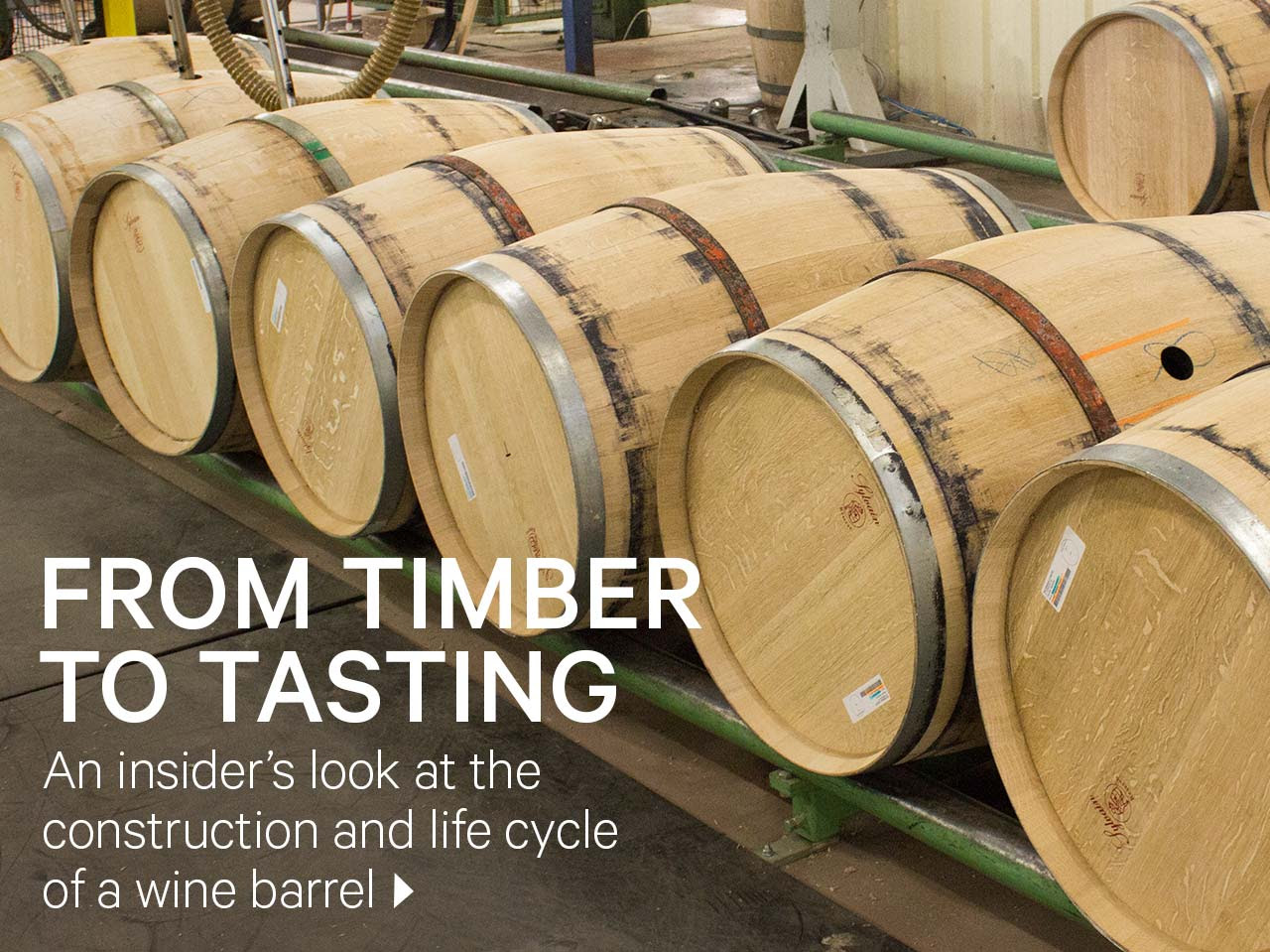 Timber to Tasting