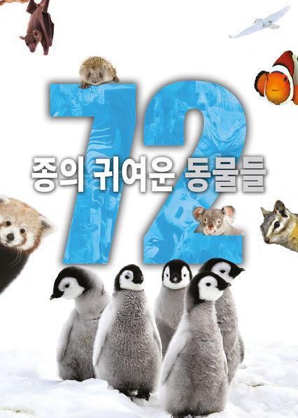 72종의 귀여운 동물들
