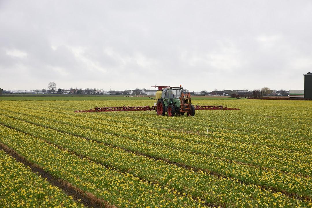 bilancio agricoltura