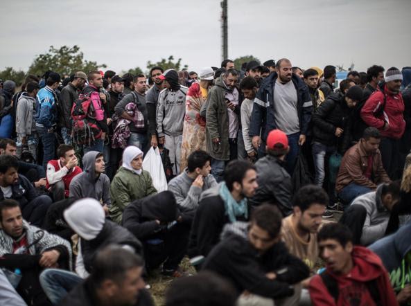 Mindestens 50 Millionen Muslime sind gewaltbereit