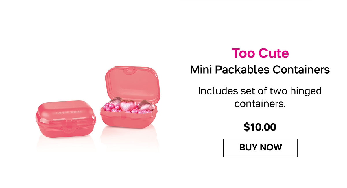 Mini Packables Containers