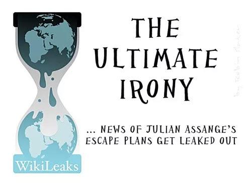Irony_Assange.jpg