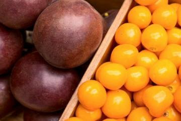 Exportaciones de frutas exóticas de Colombia sumaron US$ 37.8 millones en el primer cuatrimestre del 2021, mostrando un incremento de 27.5%
