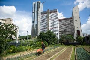 VENEZUELA-AGRICULTURE-POLITICS