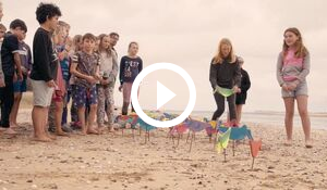 Group of students on the beach - play button