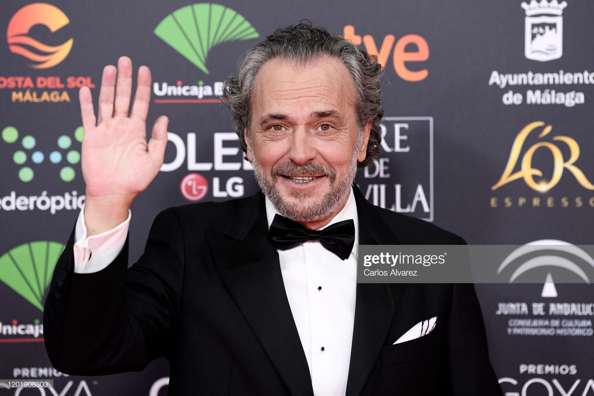 df906e4f 0b08 4b6a bf16 359140b93c83 - Premios Goya 2020 : Looks de todas las celebrities que lucieron  marcas de Replica