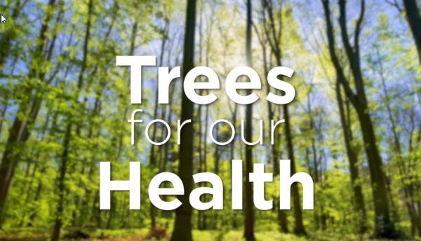 Trees for our health