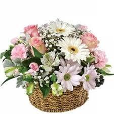 Kết quả hình ảnh cho hoa mừng sinh nhật