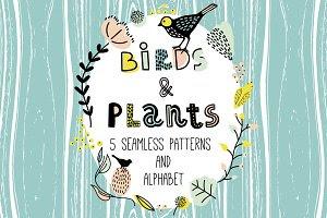 Birds&Plants