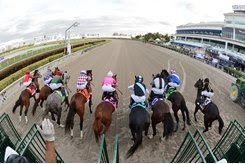 The Florida Derby was conducted without fans at Gulfstream Park