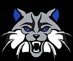 Sonoran Foothills School Logo
