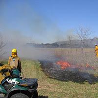 Prescribed grassland burn