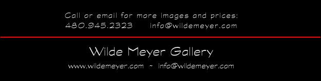 info@wildemeyer.com | www.wildemeyer.com | 480.945.2323