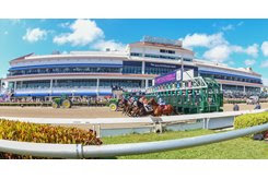 Racing Jan. 25 at Gulfstream Park