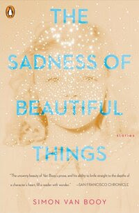 The Sadness of Beautiful Things, by Simon van Booy