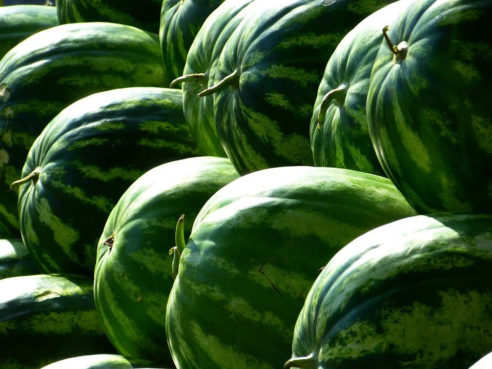 Melões, Melancias, Frutas, Verde, Melancia