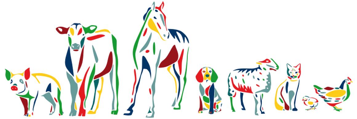 banner animales