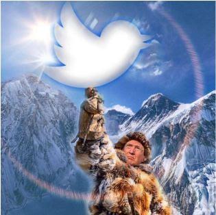 trump twitter tweet