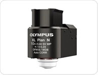 Maximize resolution in deep imaging for neuroscience research with Olympus TruResolution objectives