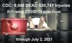 CDC/VAERS Stats Through July 2nd, 2021 CDC-7.2.21-data-dump-768x461-1-300x180